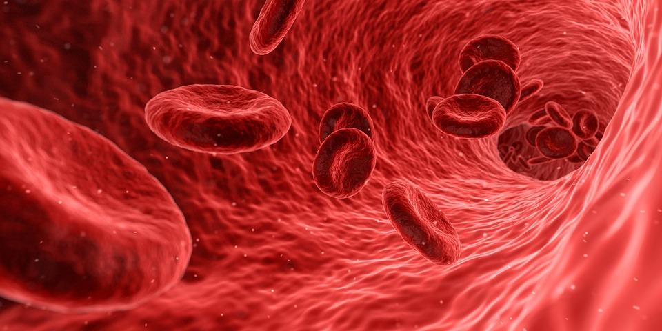 A vérszegénységen is segíthet a folsav, ha más anyagokkal van jelen